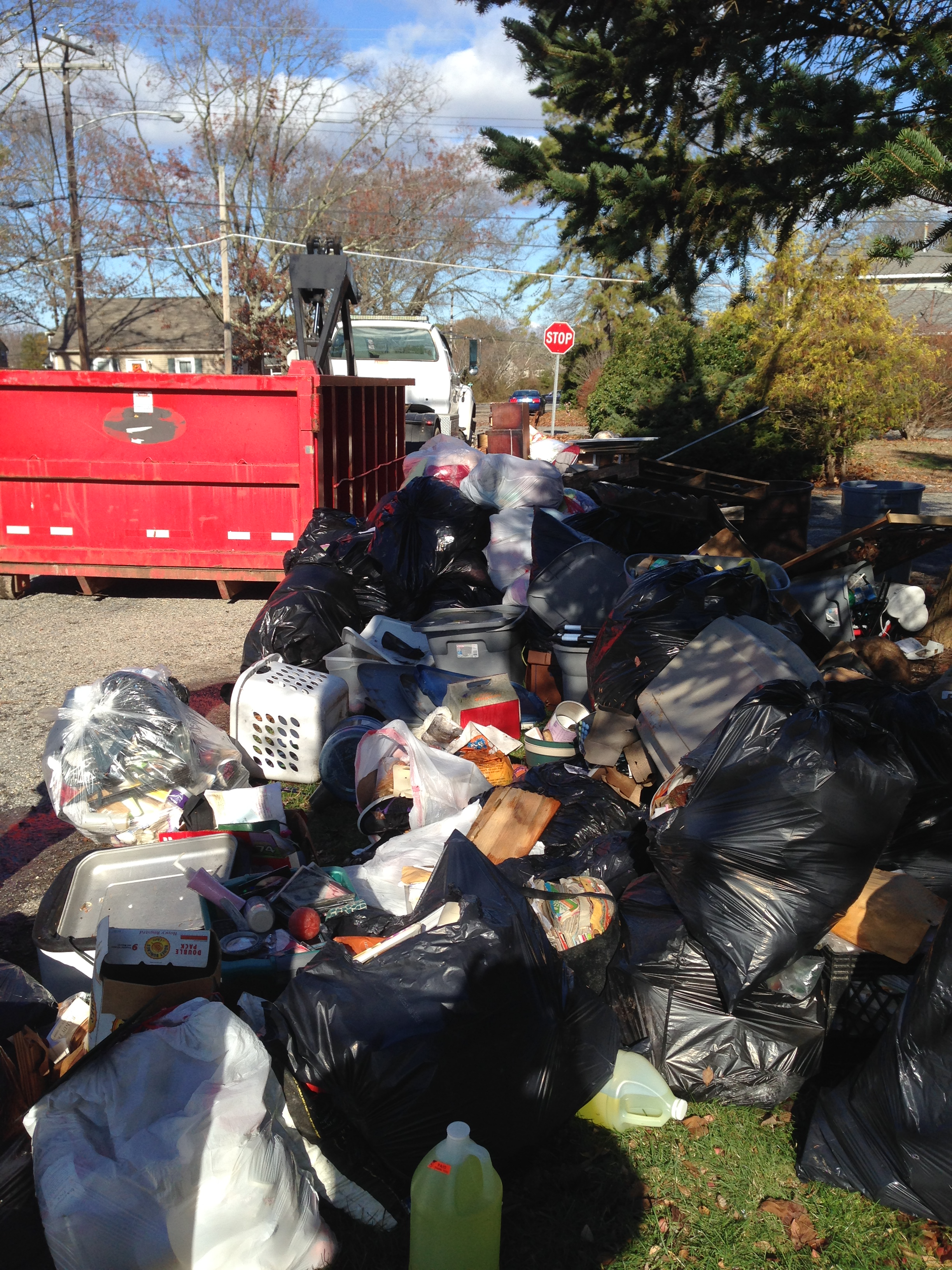 Junk Removal project in Birck, NJ